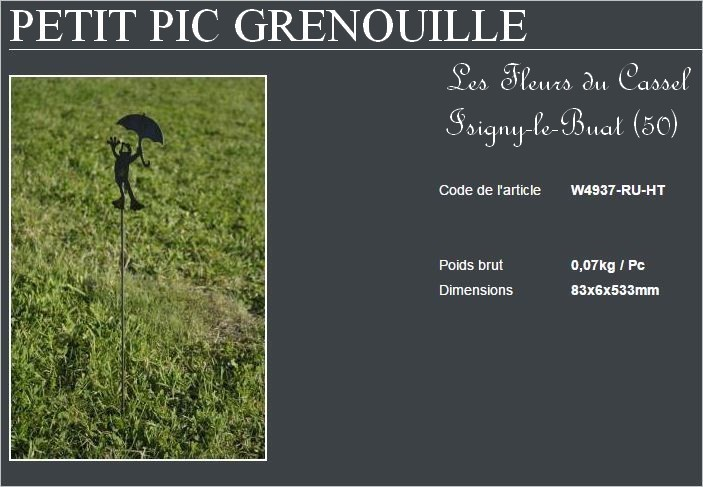 Grenouille pic 2
