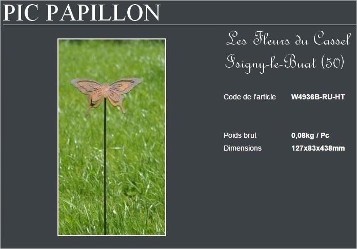 Papillon petit pic 2